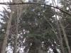 Merklín - louka, směr Pstruží