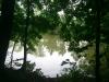 Ostrov - Borecké rybníky